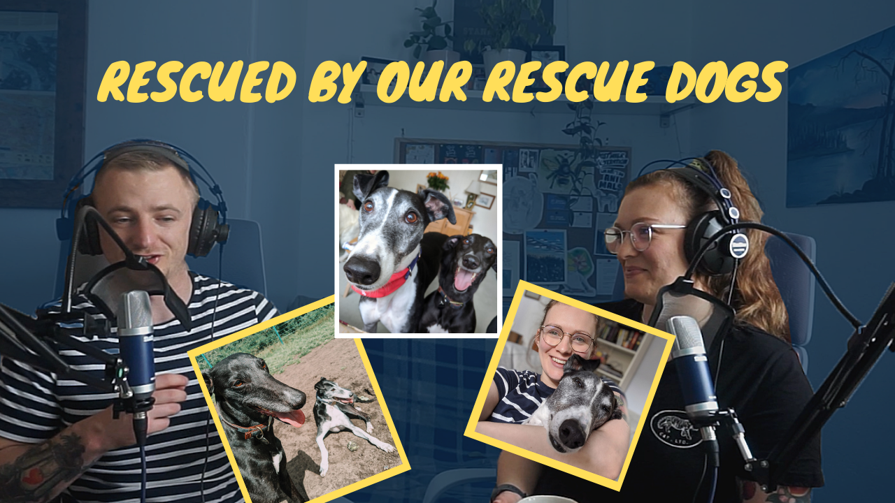How Our Rescue Dogs Rescued Us